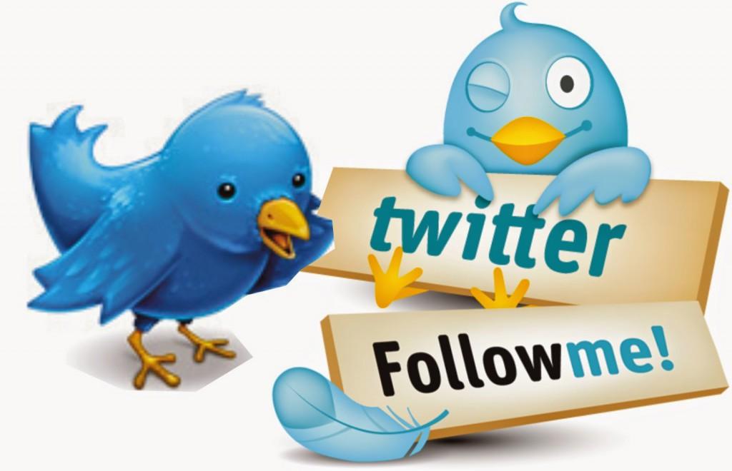 ¿Cómo puedes conseguir tener muchos seguidores en Twitter?