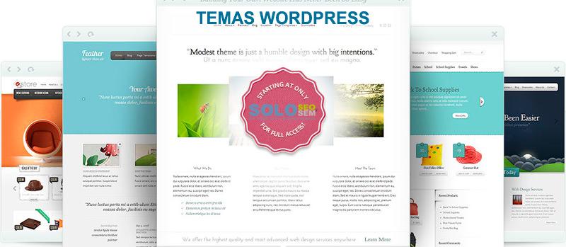 Cómo instalar un tema WordPress